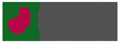 logo-antanes-school-leganes
